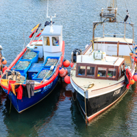 Fishermen in Devon and Cornwall to receive free dental treatment